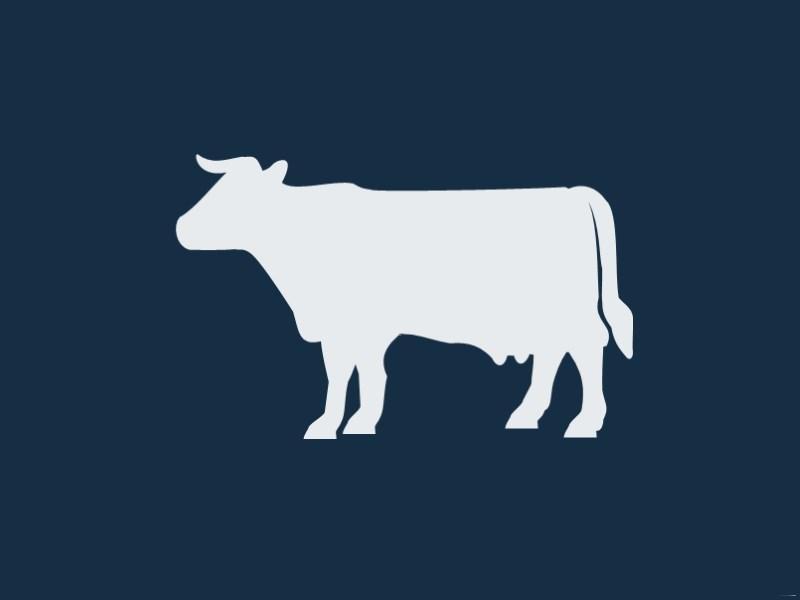 Cash Cow, дойная корова